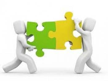 Vai trò của các thành viên trong công ty của chính các bạn?