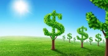 Làm thế nào để phát triển doanh nghiệp bền vững