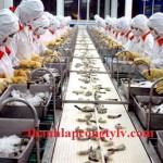 Thành lập công ty sản xuất và chế biến thực phẩm